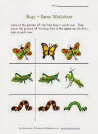 insect worksheets for preschool kootation blogspot com