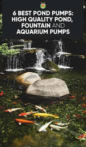 Backyard Ponds And Fountains 6 Best Pond Pumps High Quality Pond Fountain And Aquarium Pumps