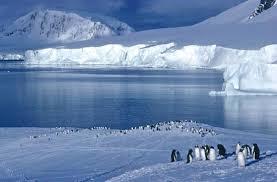 imagenes de la antartida chile desarrollo sustentable la antártida un laboratorio para el