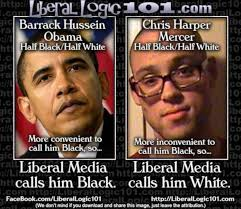 Liberal Memes - meme shows exactly how liberal media uses race to further their