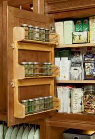 incredible spice organizers for wall cabinets with bronze cabinet