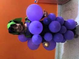 Halloween Grape Costume Grapes Costume Balloons Fancy Dress