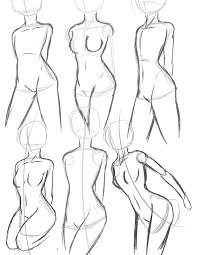 Female Anatomy Diagram For Kids Best 25 Body Proportions Ideas Only On Pinterest Figure Drawing