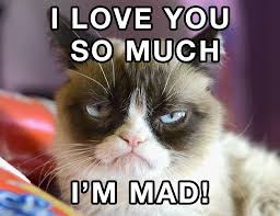 Im Mad At You Meme - grumpy cat 3 imgur