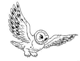flying owl drawing clipart panda free clipart images