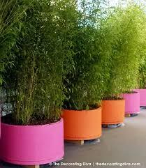 garden design garden design with ideas for large garden