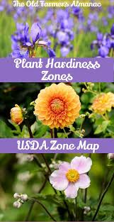Garden Planting Zones - the 25 best hardy zones ideas on pinterest