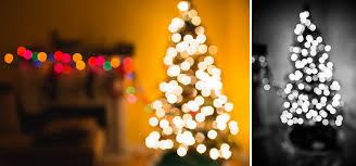 take better christmas tree photos in 5 easy steps christmas tree photos bokeh