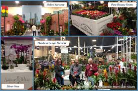 native south florida plants south florida plant show tpie uf ifas extension miami dade county