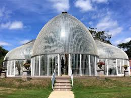 Bicton Park Botanical Gardens The Glasshouse Picture Of Bicton Park Botanical Gardens Exeter