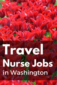 Washington travelling jobs images 234 best travel nurse tips images nurses travel jpg