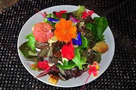 edible flower garnish 10 edible flowers to add to your garden peaceful dumpling