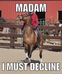 Horse Riding Meme - horse memes tumblr google search equestrian problems pinterest