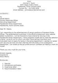 cover letter format online job application cover letter online job in Cover Letter For Internal Position Job