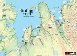 Green Circle Trail Map Birding Iceland Interactive Birding Iceland Map Including