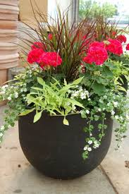 Front Porch Planter Ideas by Front Porch Potted Plants Ideas U0026 Tips Fetching Image Of
