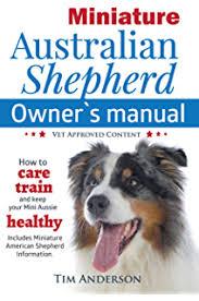 training a australian shepherd australian shepherd dog training think like a dog but don u0027t eat