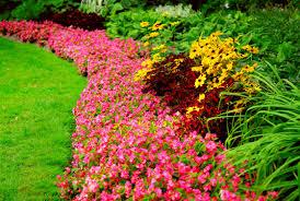 garden design garden design with back yard ideas for small yard