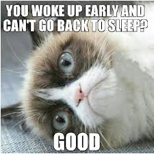 Grumpy Cat Sleep Meme - grumpy cat sleep meme 28 images no sleep funny quotes about