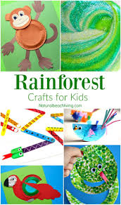best 25 rainforest preschool ideas on pinterest rainforest