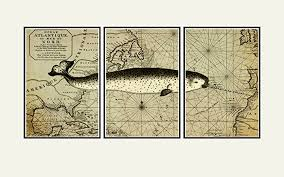 narwhal wall map whale nautical