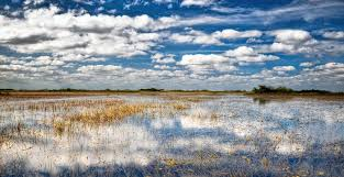 Everglades National Park Map Everglades National Park Vacation Travel Guide And Tour