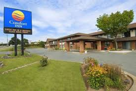 Comfort Inn Best Western Best Western Plus Dartmouth Hotel U0026 Suites Dartmouth The Best