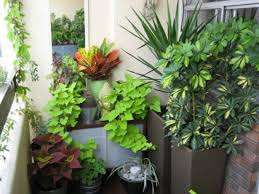 small porch garden ideas