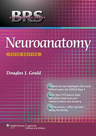 brs neuroanatomy 5th edition pdf medical students medical and