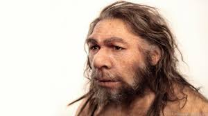 bbc earth what did the neanderthals do for us