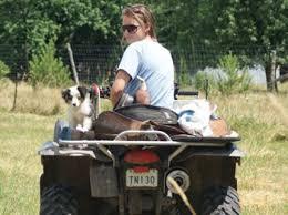 australian shepherd size at 8 weeks saddle up stables miniature u0026 toy australian shepherds and