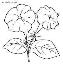 fiori disegni infanziaweb