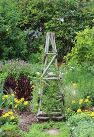 2014 open gardens open gardens constantia