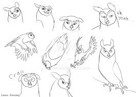 nathan owl sketches by zavraan on deviantart