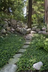 Backyard Ground Cover Ideas 43 Best Ground Cover Ideas Images On Pinterest Garden Paths