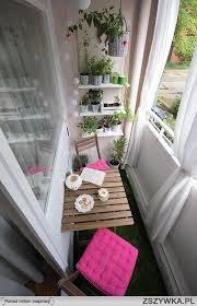 wã schespinne fã r balkon 265 best summer balcony sommer auf balkonien images on