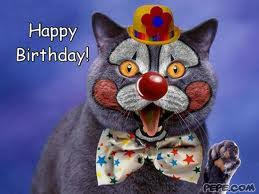 clowns for birthday happy birthday cat clown artwork birthday cats and