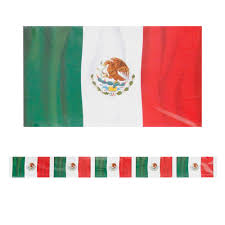 mexican flag border small from american carnival mart