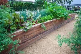 how to start a vegetable garden tesco garden centre