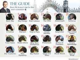 lexus tent melbourne cup 2015 melbourne cup 2015 form guide punter u0027s guide and expert u0027s tips
