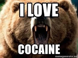 Bear Cocaine Meme - i love cocaine grizzly bear man meme generator