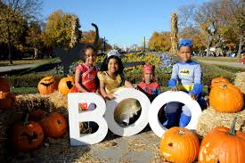 things to do in chicago for halloween 2014 hyatt regency