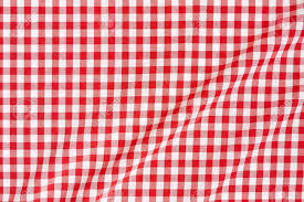 table gingham table cloth dreadful gingham fabric tablecloth
