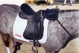 horse saddle child s saddle pad saddle adapter