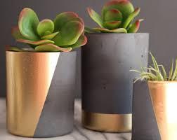concrete planter mini concrete succulent planter