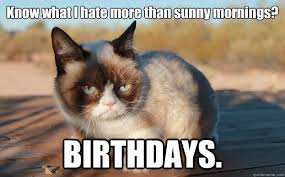 Birthday Meme Grumpy Cat - know what i hate more than sunny mornings birthdays grumpy cat
