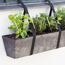 Indoor Herb Pots Window Box - indoor herb garden ideas jane hogan designs