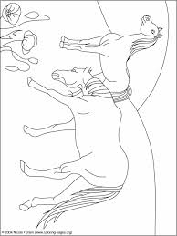 100 ideas coloring pages horses print emergingartspdx