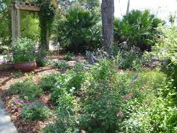 Cottage Gardening Ideas Reader Photos A Cottage Garden In Southern Florida Finegardening