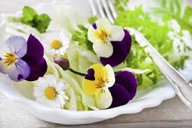 les fleurs comestibles en cuisine quelles fleurs comestibles manger plantes comestibles
